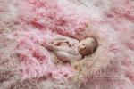fotografia noworodków tranów